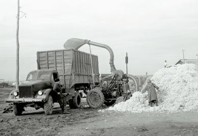 GAZ-51 during the harvesting in Nizhny Novgorod region. 1952